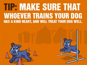 What-You-Need-to-Know-About-Dog-Training