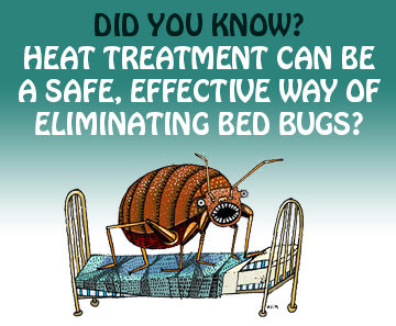 How-Does-Bed-Bug-Heat-Treatment-Work