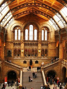 natural-history-museum-5_l