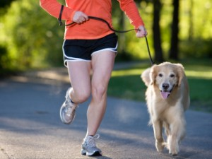 The Importance Of Walking Your Dog Every Day