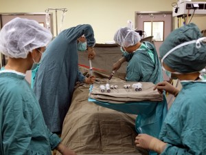 Avail World Class Bone Marrow Surgery At The Best Prices