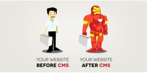 Building The Perfect Website - Why You Need A CMS