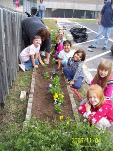 Planting Flowers In Your Yard - Is It Worth The Maintenance