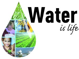 The Best Water Conservation Tips