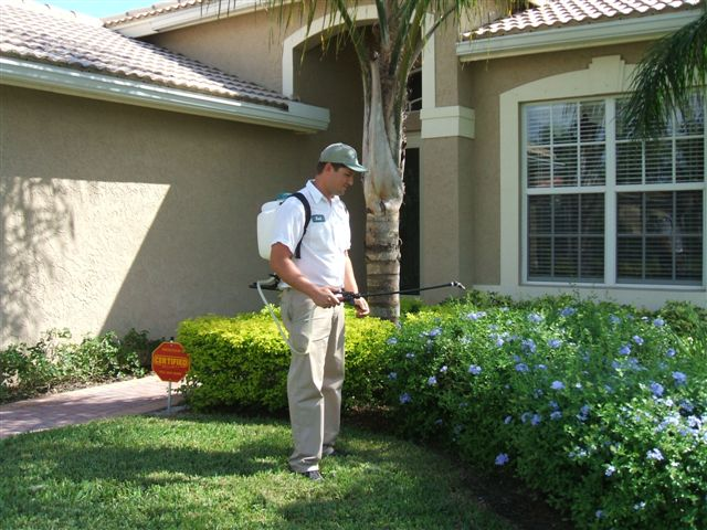 Tips For Do-It-Yourself Pest Control
