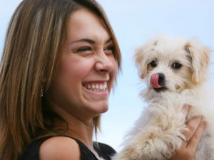 Home Remedies For Dog Hot Spots: Do They Really Work?