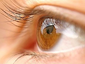 Why Poor Nutrition Can Significantly Harm Your Eye Health